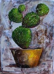 Le cactus tranquille.