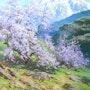 Mountain Landscape. Alexandr Nemakin