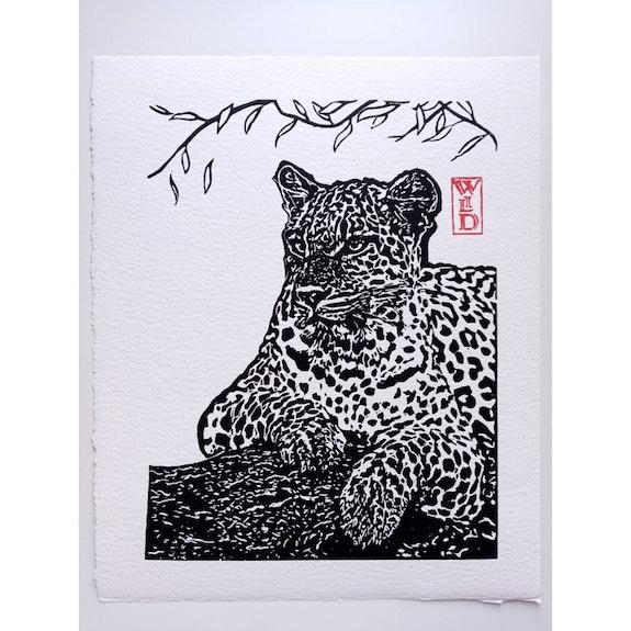 Léopard de l'Amour. Wildbywild Wild. By. Wild