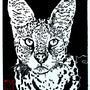 Le serval. Wild. By. Wild