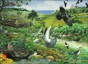 Oiseaux dans les landes.