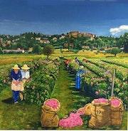 Cueillette des roses centifolia. Irène Pagès