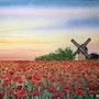 Poppy field.. Erkin Yilmaz