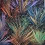Le feu de couleurs. Christelle Delcourt