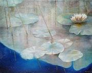 Lotus. Rosário Falcão
