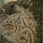 Le trio de Loup au lever du jour…. Michel. Gouyet