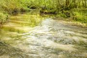 Ruisseau.