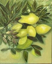 El limonero. Mónica Cano Guio