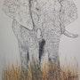 Éléphant. Yves Briais