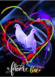 Forever love!.