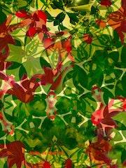 Abstrait végétal.