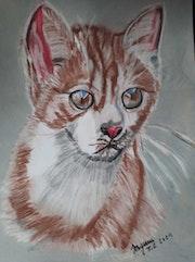 Un chat au paste sec. Jean-Louis Majerus