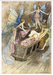 The book of fairy poetry. Evelin Felix