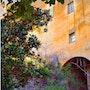 Reflet safran sur le vieux mur. Byalmador