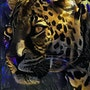 Almir, leopard - Mix media on panel - 70x48 cm-OOAK. Léa Roche