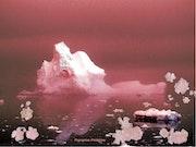 Fleurs de glace.