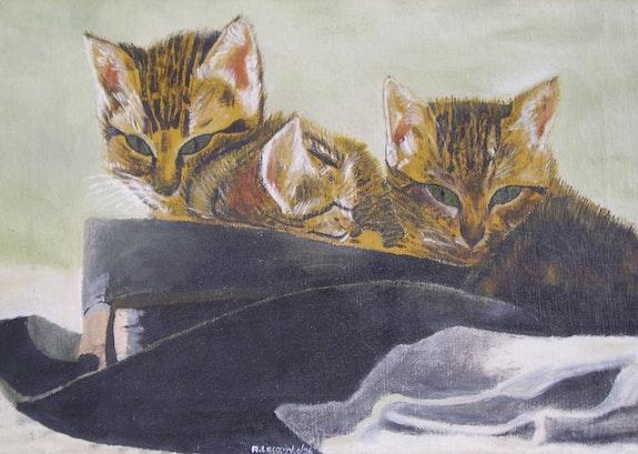 Les Chats peuliers. Anne Lecomte Anne Lecomte