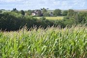 Fin d'été en douceur dans le Poitou. Microzede