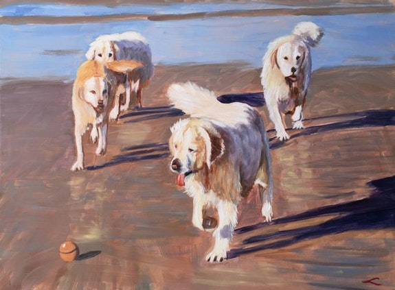 Dogs. Maka Magnolia Magnolia