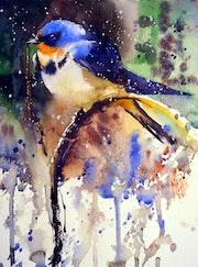 Barn swallow. André Méhu