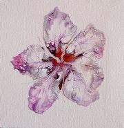 Simply pure purple flower.