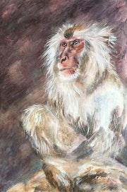 Monkey god - realism wildlife Japan's monkey. Ksenia Lutsenko