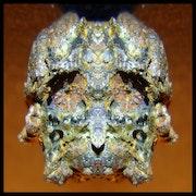 Prehistoric Skull Sculpture.