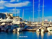 Le Port- Monaco.