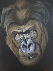 Le gorille. Daniel Beaucher