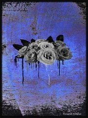 Quand pleurent les roses.