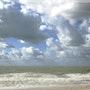 Dans le vent, les vagues.