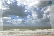 Dans le vent, les vagues. Véronique Romance