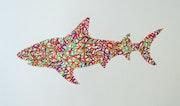 Shark In Orange and Green. Dan Bar