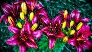 Цветы 061.