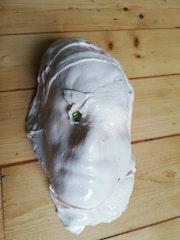 Reprobation Mask 26. Straiph Wilson