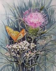 Chardon et papillon.