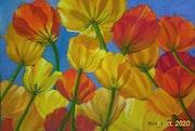 Tulipes dans le vent d'autant;.