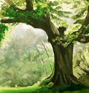 Sur le thème des arbres, un chêne moussu.. Claude Beretti