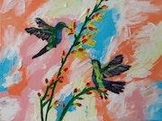 Hummingbirds. Setati