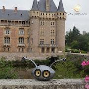 Autonomous transportable speaker «Nono». Gautier Audio