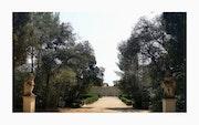 Jardin Secret….