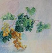 Lumière d'automne- raisins dorés. Nathalie Savon