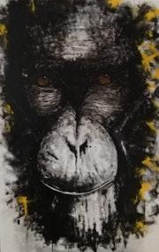 Big Monkey.