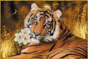 Le Roi Tigre.