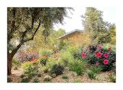Le Jardin Des Souvenirs….