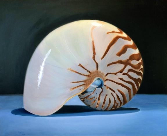 Caracola. Montse Lamolda Montse Lamolda