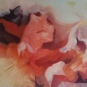 Pétalos Colorido de la Naturaleza. Cielo Rincon