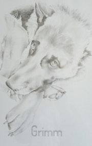 Portrait de Grimm. Lucie Richard