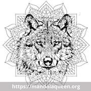 Tatouage Loup Mandala. Samantha Mandart