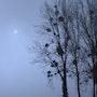 Quand la lune danse… Avec Mr brouillard. Christiane Carassou